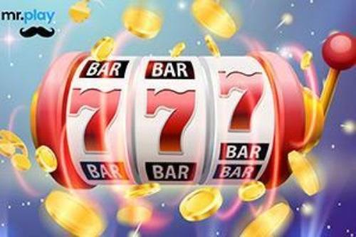 Case de pariuri sportive - jocuri bingo